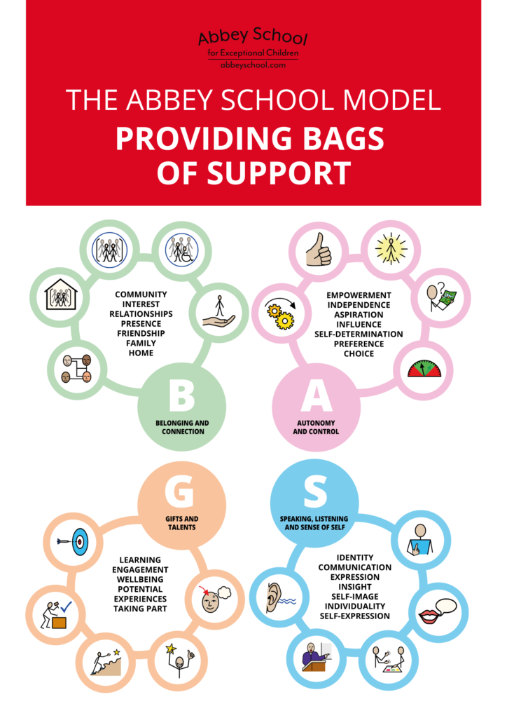 BAGS framework - Abbey School